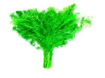 Grupo verde do aneto Imagem de Stock