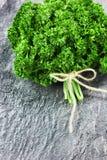 Grupo verde fresco da salsa Imagem de Stock