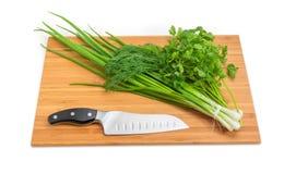 Grupos da cebola verde, aneto, salsa, faca na placa de corte Fotos de Stock
