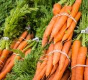 Grupos da cenoura Foto de Stock