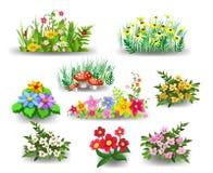 Grupos da coleção das flores Ilustração Stock