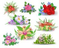 Grupos da flor Ilustração Royalty Free