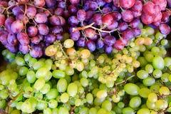 Grupos da uva azul e branca no mercado imagem de stock royalty free