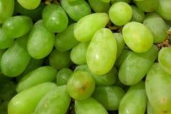 Grupos da uva verde fresca imagem de stock