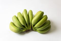 Grupos das bananas verdes, underripe do bebê ventiladas para fora fotos de stock