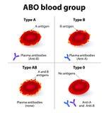 Grupos de ABO Blood Imágenes de archivo libres de regalías