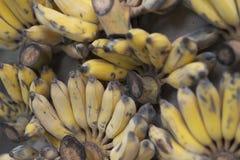 Grupos de bananas asiáticas amarelas maduras imagem de stock