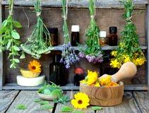 Grupos de ervas curas - hortelã, yarrow, alfazema, trevo, hyssop, milfoil, almofariz com as flores do calendula e garrafas, imagem de stock