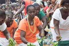 Grupos de mulheres mais idosas de dança Imagens de Stock
