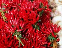 Grupos de pimentas de pimentão vermelho Alho no lado Fundo do alimento imagens de stock