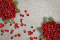 Grupos de rosas vermelhas imagem de stock royalty free