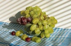 Grupos de uvas fotos de stock royalty free
