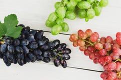 Grupos de uvas azuis e cor-de-rosa e verdes maduras frescas em pranchas brancas de madeira velhas imagens de stock