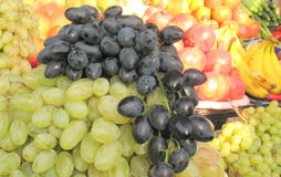 Grupos de uvas maduras Fotos de Stock Royalty Free
