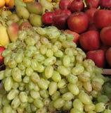 Grupos de uvas maduras Foto de Stock