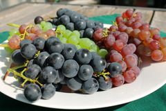 Grupos de uvas maduros frescos em uma tabela de pátio ensolarada Imagem de Stock Royalty Free