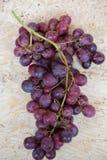 Grupos de uvas vermelhas fotografia de stock royalty free