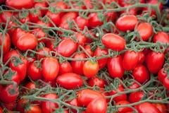 Grupos do close-up vermelho maduro fresco dos tomates de cereja Imagens de Stock