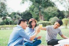 Grupos do jovem adolescente que têm o piquenique do divertimento no parque junto fotos de stock royalty free