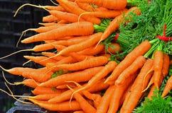 Grupos do mercado dos fazendeiros de cenouras frescas Imagem de Stock Royalty Free