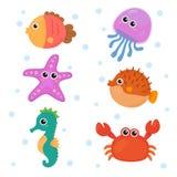 Grupos dos animais marinhos Fotografia de Stock Royalty Free