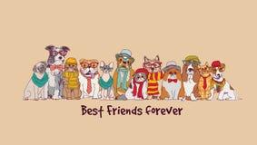 Grupowa moda najlepszych przyjaciół zwierząt domowych zabawy zwierząt karta royalty ilustracja