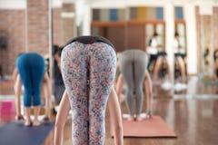 Grupowe kobiety rozciąga i praktyk joga w klasie Zdjęcia Royalty Free