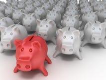 grupowe świnie Fotografia Stock