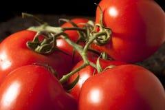 grupowi pomidory Zdjęcia Stock