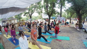 Grupowy hatha joga na ethno ezoteryka festiwalu zdjęcie wideo