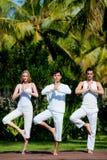 Grupowy Joga zdjęcie royalty free