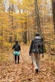 Grupowy trekking Zdjęcie Stock