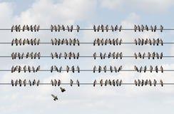 Grupowy zarządzanie Zdjęcia Stock