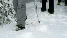 Grupp av äldre folk som skidar i vintertid arkivfilmer