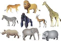 Grupp av afrikanskt djurt löst liv, gepard, lejon, giraff, sebra, gorilla, antilop, noshörning, elefant, flodhäst - vektor Illus royaltyfri illustrationer