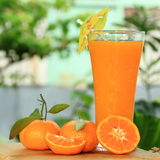 Grupp av apelsin och fruktsaft royaltyfria bilder
