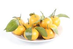 Grupp av apelsinen på plattan royaltyfria foton