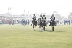 Grupp av arabiska hästar som får klara för ett uttålighetlopp arkivfoton