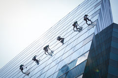 Grupp av arbetare som gör ren fönsterservice Royaltyfria Foton