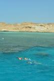 Grupp av att simma för dykare Royaltyfri Foto