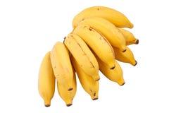 Grupp av bananer Royaltyfri Foto