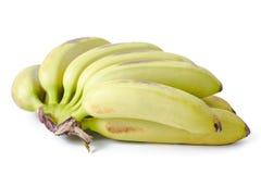 Grupp av bananer Royaltyfria Foton