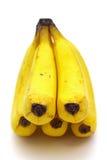 Grupp av bananer på vitbakgrund Royaltyfria Foton