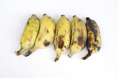Grupp av bananer som isoleras på vit bakgrund Royaltyfri Foto