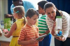 Grupp av barn som ut bär experiment i vetenskapsgrupp arkivbild