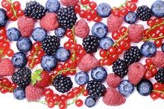 Grupp av blandade bär i skördhög på vit bakgrund Färgrik sammansättning med den nya organiska jordgubben, blåbär, blackbe arkivfoto