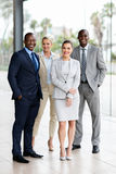 Grupp av blandras- businesspeople royaltyfri foto
