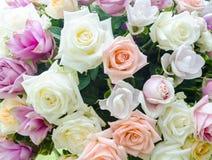 Grupp av blommabakgrund Arkivfoton