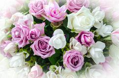 Grupp av blommabakgrund Royaltyfria Bilder