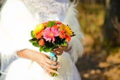 Grupp av blommor 11 Royaltyfri Foto